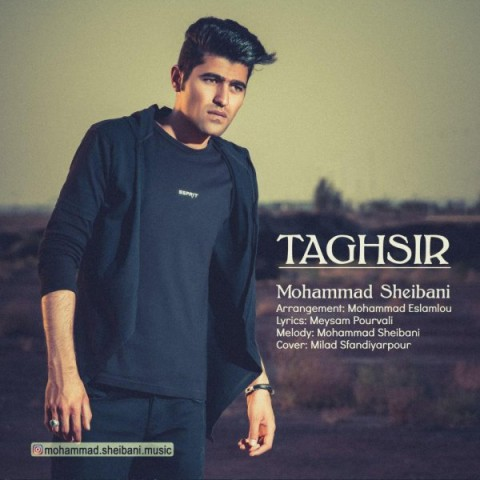 دانلود موزیک جدید محمد شیبانی تقصیر