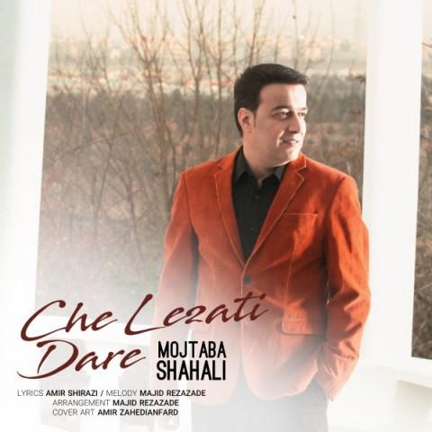 دانلود موزیک جدید مجتبی شاه علی چه لذتی داره