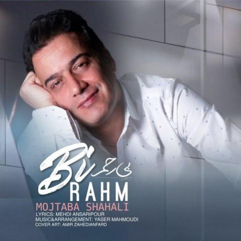 دانلود موزیک جدید مجتبی شاه علی بی رحم